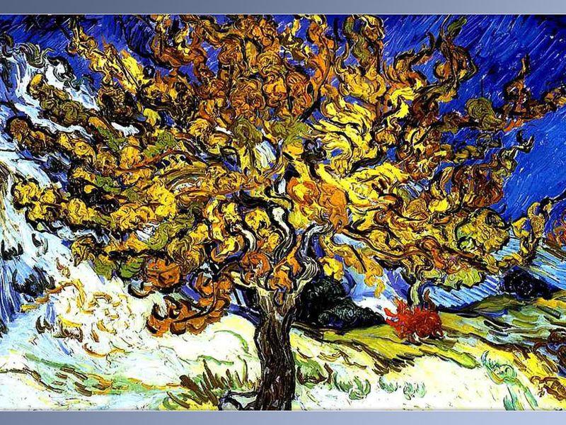Van-Gogh-0011