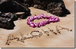 Aloha and Mai-Mai -- Thoughts on Greetings and Farewells